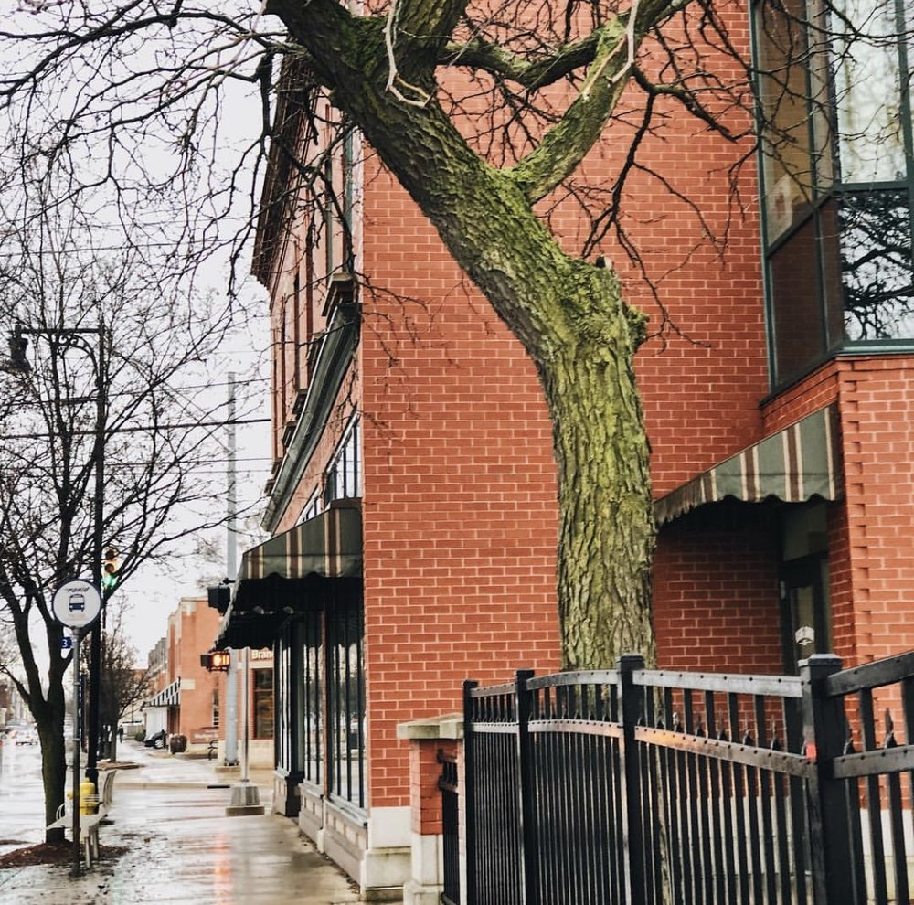 Linc Up - Linc Up has a deep understanding of the systems, relationships and dynamics within the communities they serve and therefore use a holistic approach to neighborhood revitalization. They are a community development organization that provides services to Kent County, and are involved in a host of projects and services that reach families, houses, businesses and neighborhoods at large.